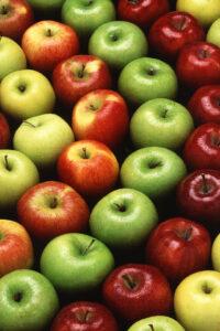 pregnancy nutrition apples