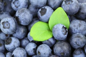 pregnancy nutrition blueberries