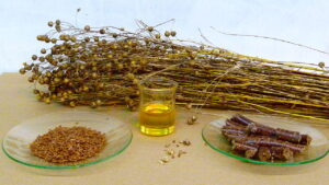 pregnancy nutrition flaxseed