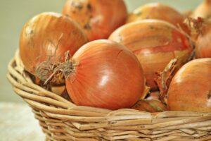 pregnancy nutrition onions