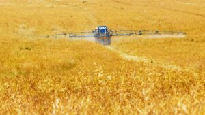 pesticides in pregnancy