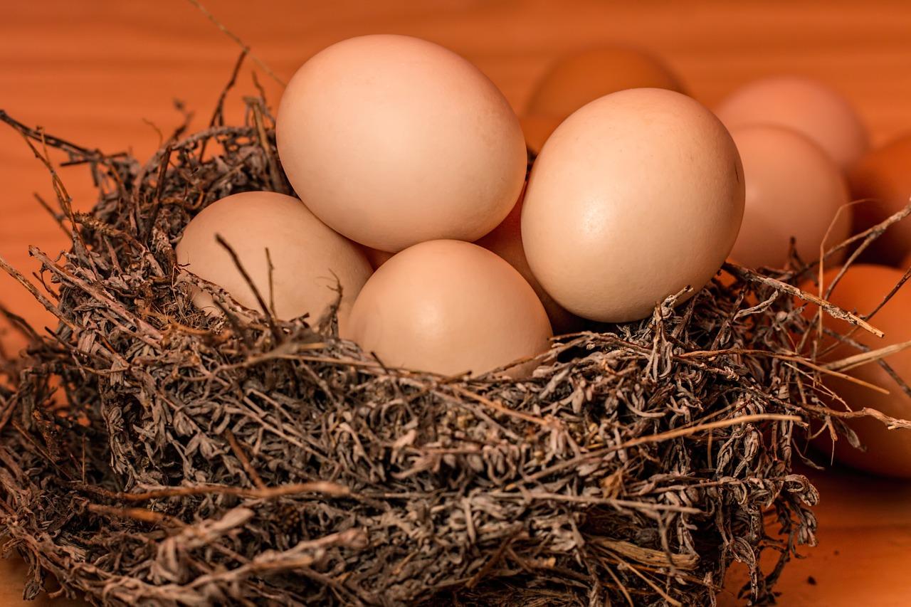 pregnancy nutrition iron found in eggs
